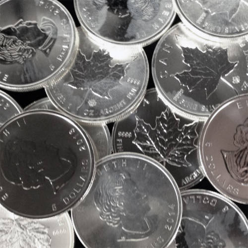 1 oz .9999 Canadian Silver Maple Leaf Coin - (Discount Impaired Coins)